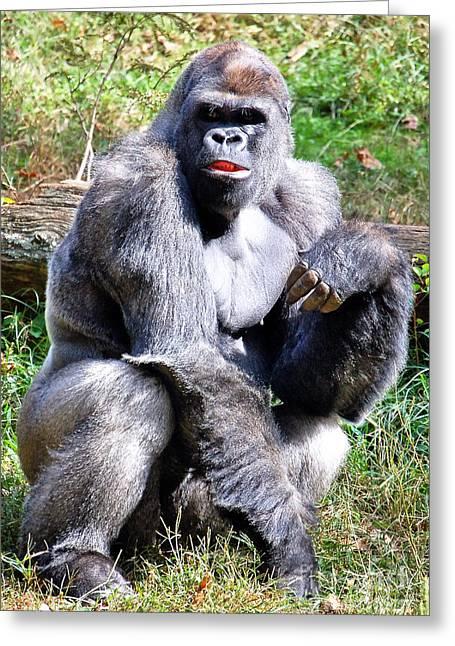 Gorilla Greeting Card by Kathleen K Parker