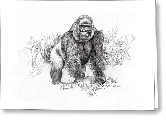 Gorilla Greeting Card by Timothy Ramos