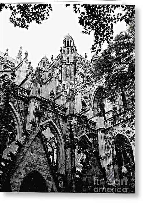 Gothic Cathedral Of Den Bosch Greeting Card by Carol Groenen