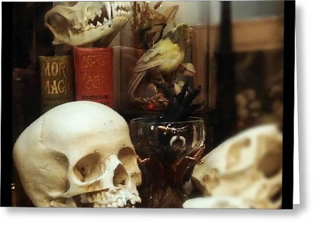 Gothic Curio Greeting Card