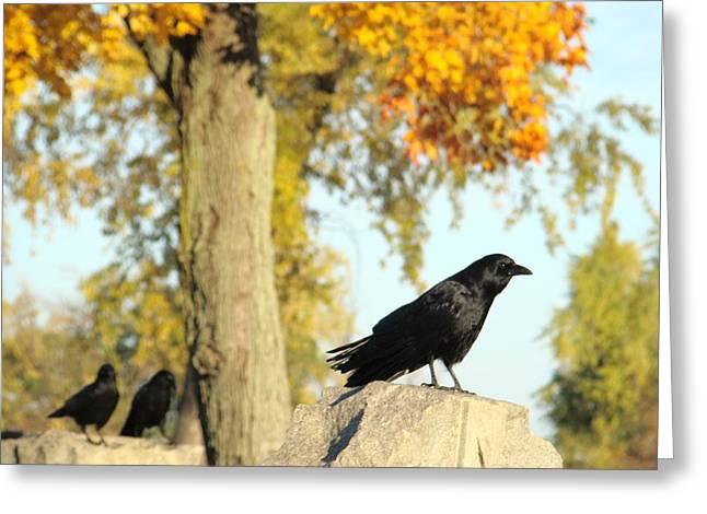 Three Ravens On A Gothic Graveyard Day Greeting Card