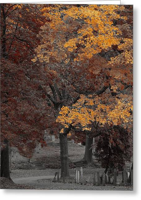 Gothic Nature Greeting Card