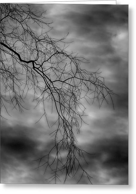Gothic Sky Greeting Card by Robert Ullmann