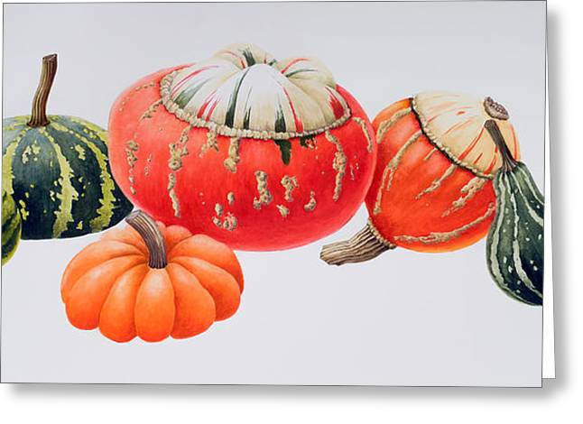 Gourds Greeting Card by Sally Crosthwaite