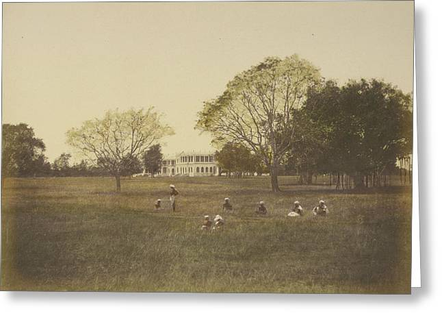 Government House And Park Greeting Card by British Library