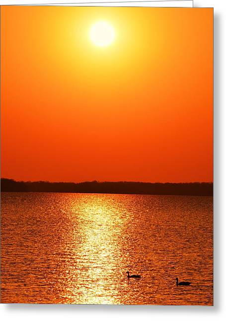 Grab Your Cup Of Coffee And Enjoy The Sunrise Greeting Card by Dacia Doroff