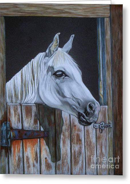Grace At The Stable Door Greeting Card