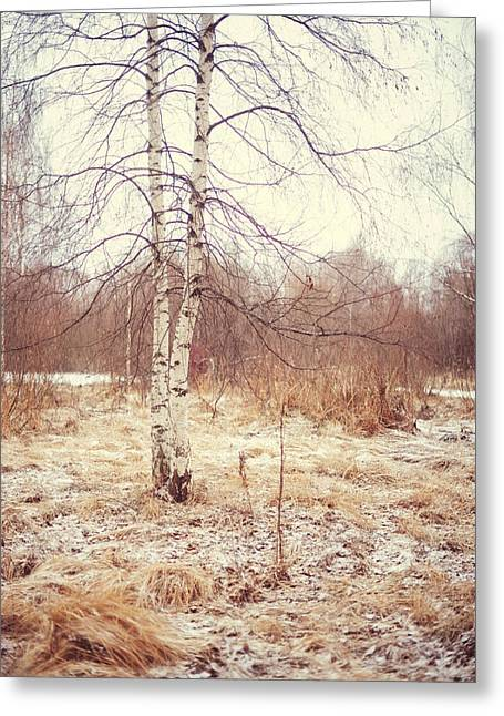 Grace In The Snow. Winter Poems Greeting Card