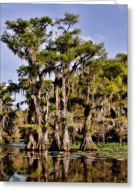 Greeting Card featuring the photograph Grace Of Caddo by Lana Trussell