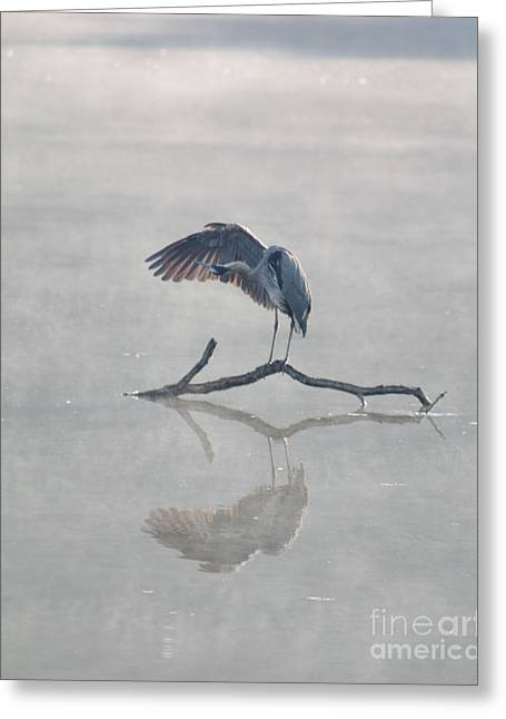 Graceful Heron Greeting Card by Anita Oakley