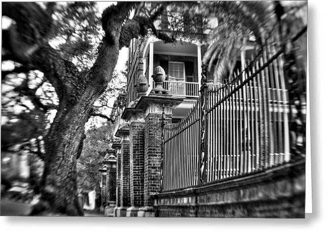 Graceful Old Oak And Fence One Greeting Card by Andrew Crispi