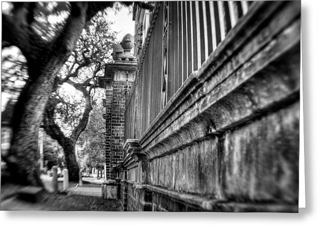 Graceful Old Oak And Fence Two Greeting Card by Andrew Crispi