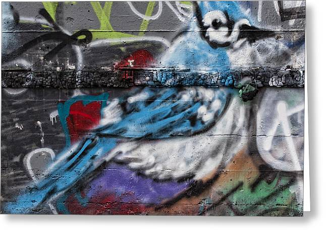 Graffiti Bluejay Greeting Card by Carol Leigh