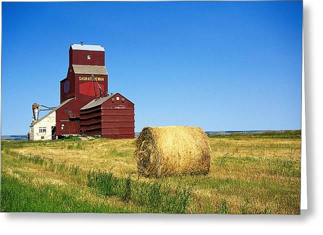 Grain Silo Saskatchewan Greeting Card by Buddy Mays