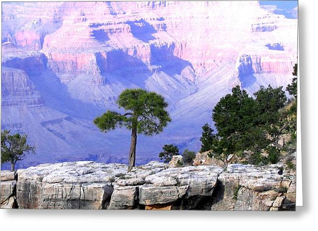 Grand Canyon 73 Greeting Card by Will Borden