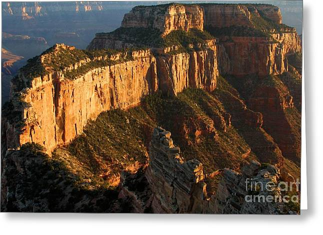 Grand Canyon Cape Royal Greeting Card by Adam Jewell