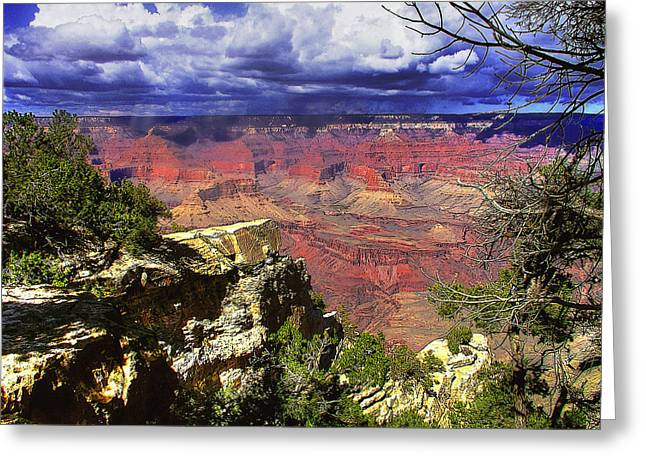 Greeting Card featuring the photograph Grand Canyon by Craig T Burgwardt