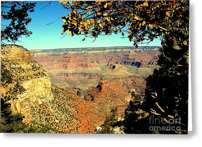 Grand Canyon Framed By Nature Greeting Card by John Potts