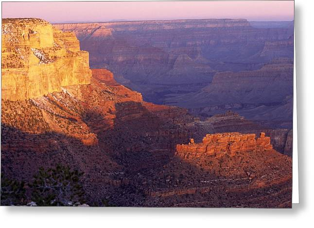 Grand Canyon From The South Rim Greeting Card