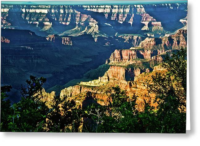 Greeting Card featuring the photograph Grand Canyon  Golden Hour On Angel Point by Bob and Nadine Johnston
