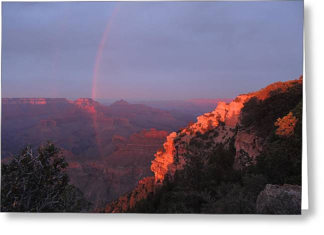 Grand Canyon Rainbow Greeting Card by Jayne Wilson