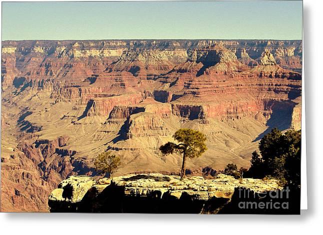 Grand Canyon Usa Greeting Card by John Potts