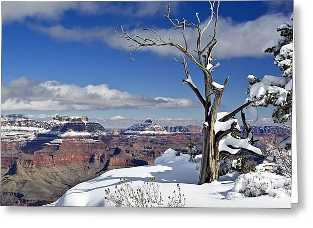 Grand Canyon Winter -2 Greeting Card