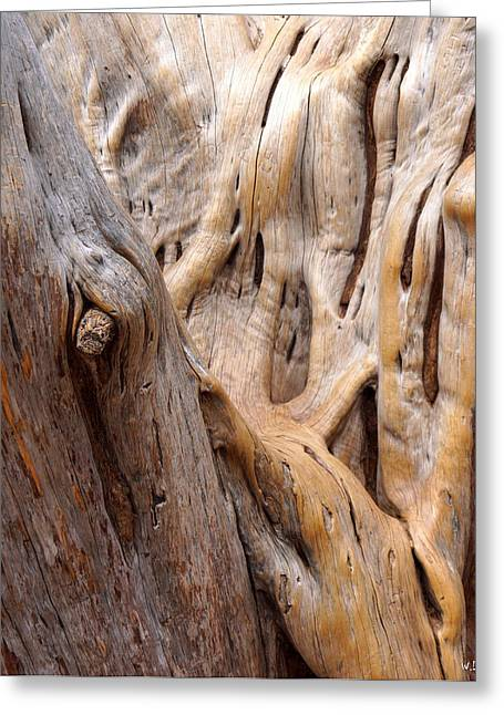 Grand Canyon Wood Greeting Card