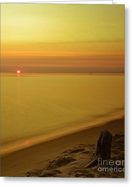 Grand Haven Sunset II Greeting Card by Will Cardoso