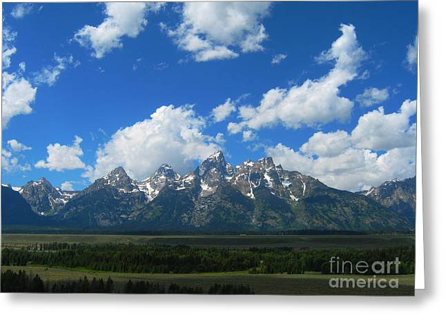 Greeting Card featuring the photograph Grand Teton National Park by Janice Westerberg