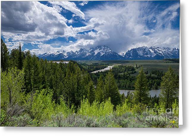 Grand Teton Np Greeting Card by Juergen Klust