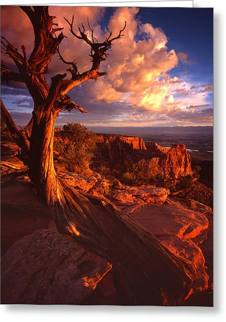 Grand View Point Sunrise Greeting Card