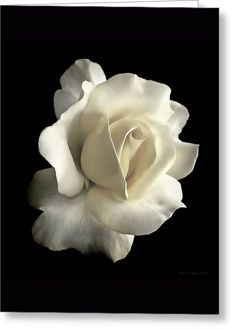 Grandeur Ivory Rose Flower Greeting Card by Jennie Marie Schell