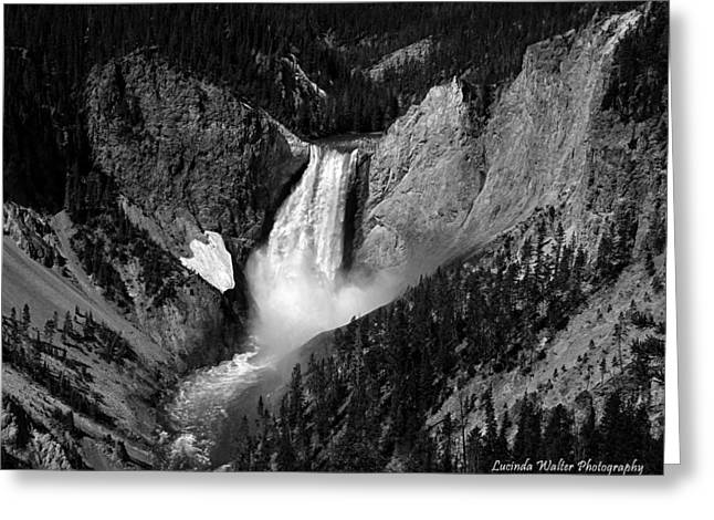 Greeting Card featuring the photograph Grandeur by Lucinda Walter