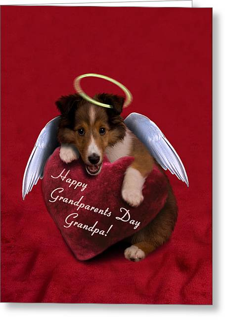 Grandparents Day Grandpa Angel Sheltie Greeting Card by Jeanette K