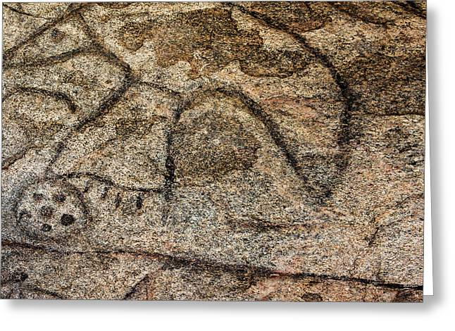 Granite Boulder Containing Many Native Greeting Card by Chuck Haney