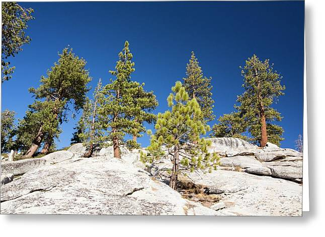 Granite Outcrop Greeting Card