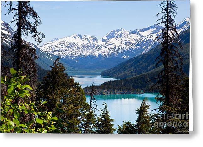 Grant Lake Overlook Greeting Card by Chris Heitstuman