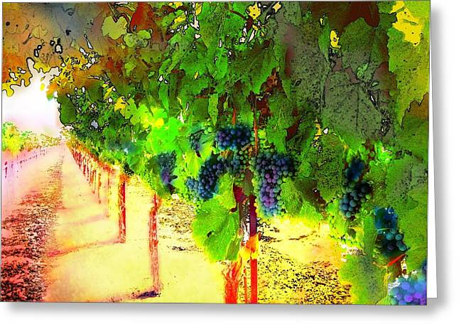Grape Vines Greeting Card by Cindy Edwards