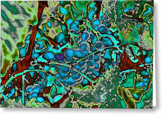 Grapes On The Vine Greeting Card by David Patterson