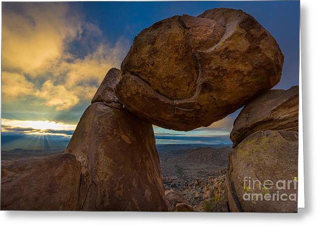 Grapevine Hills Greeting Card by Inge Johnsson
