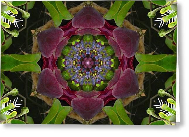 Grapevine Portal Mandala Greeting Card
