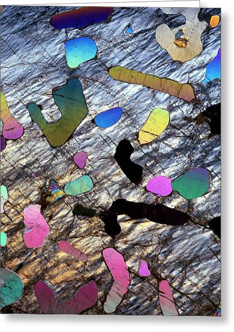 Graphic Granite In Thin Section Greeting Card by Dirk Wiersma