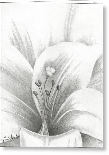 Graphite Lilly Sketch Greeting Card