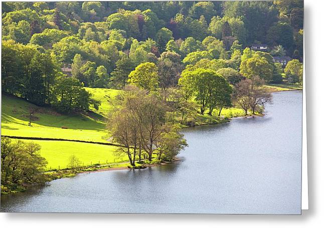 Grasmere Lake Shore Greeting Card by Ashley Cooper
