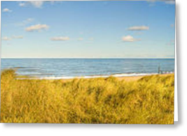 Grass On The Beach, Horsey Beach Greeting Card by Panoramic Images