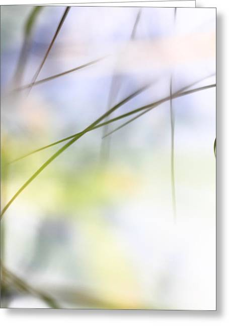 Grasses Mirrored In A Lake - Available For Licensing Greeting Card by Ulrich Kunst And Bettina Scheidulin