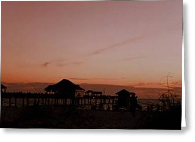 Grassy After Glow At Pier 60 Panorama Greeting Card