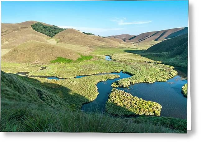 Grassy Hills And Wetlands Greeting Card by K Jayaram