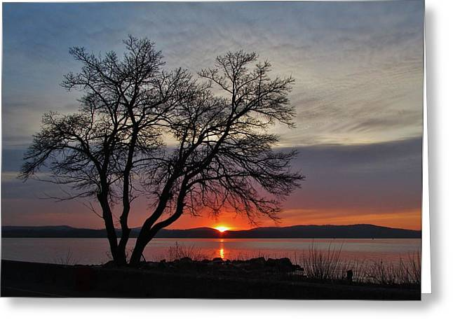 Grassy Point Sunrise Greeting Card by Thomas  McGuire